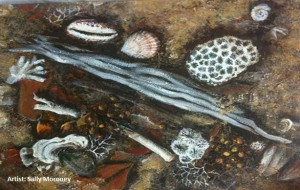 Sally Moroney Sea Shells 1